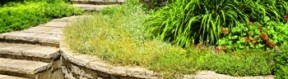 Pavage extérieur en pierre naturelle : les avantages et les inconvénients