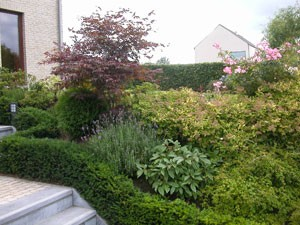 Jardin automne en belgique cr ez un parterre automnal for Entretien jardin bruxelles