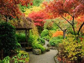 Plantations d\'automne en Belgique: les conseils d\'expert