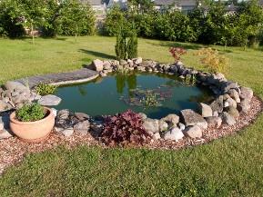 Comment aménager un étang de jardin?