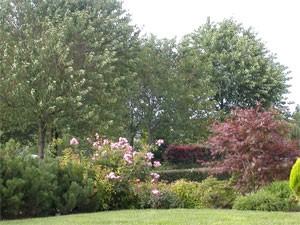 Réalisation de plantations (arbres et fleurs) en régions de Namur et ...